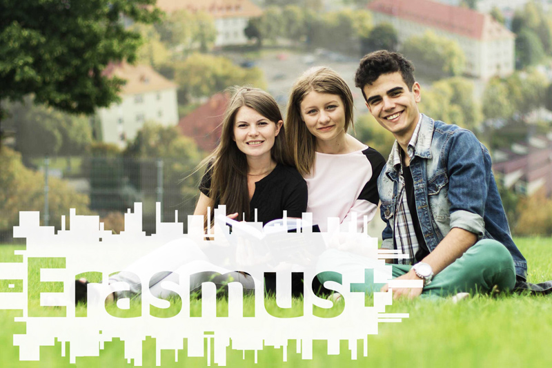 PUSS w Pile - Erasmus