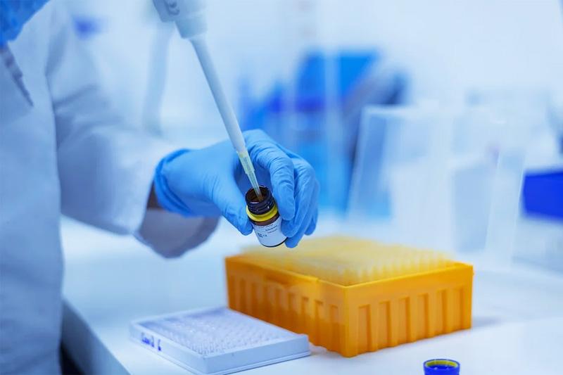 PB - biotechnologia