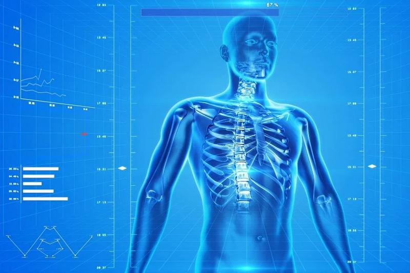 KWSPZ zaprasza na Konferencję Adeptów Anatomii